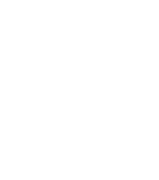 Mithril Resources Limited's Logo in Reverse